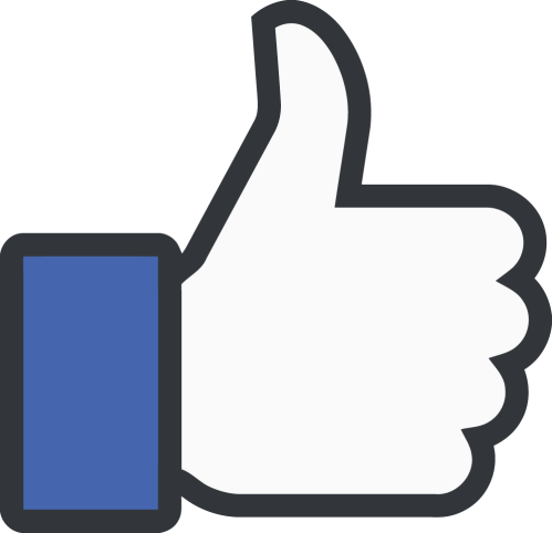 Facebook Thumbs Up Like Logo Brc